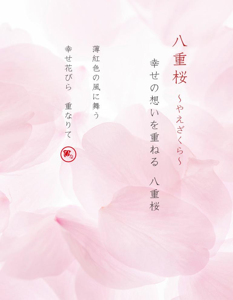 八重桜の名前と詩(うた)
